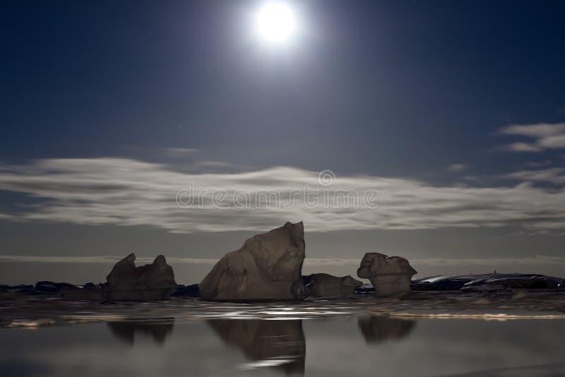 antarcticnatt arkivfoto