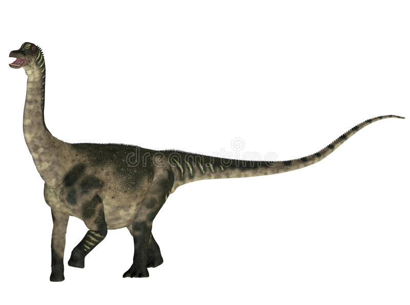 antarctosaurus ελεύθερη απεικόνιση δικαιώματος