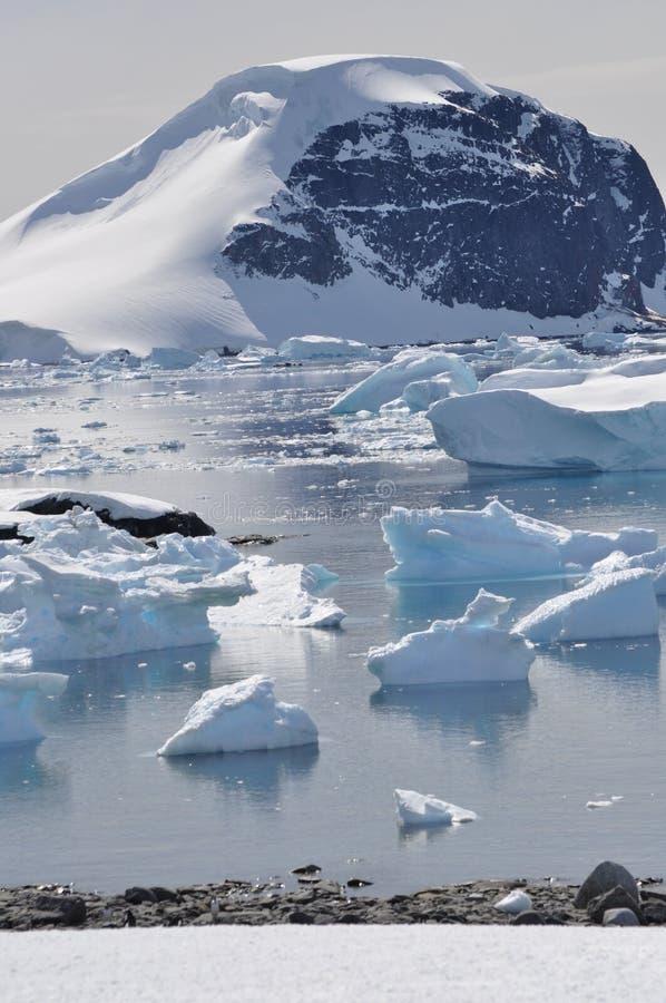 Antarktis bergisberg och hav arkivfoton