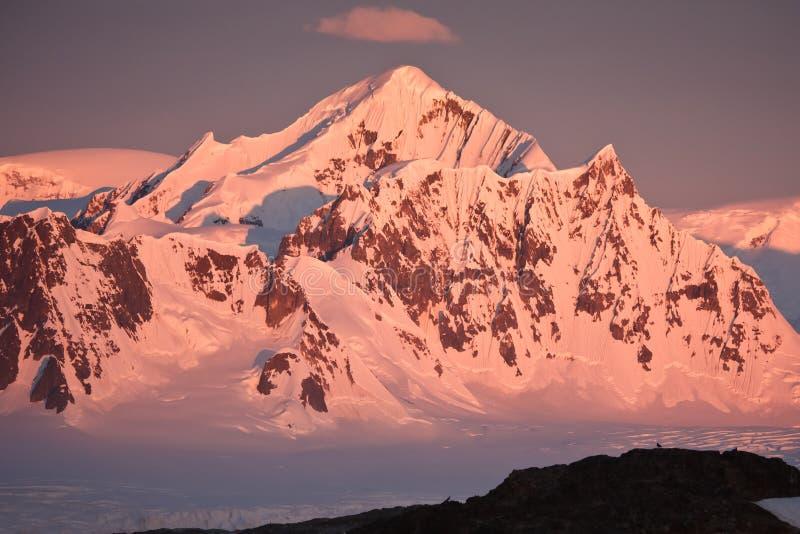 Antarktis capped bergsnow arkivfoton