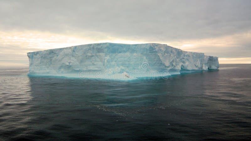 Antarktis - Iceburg royaltyfria bilder