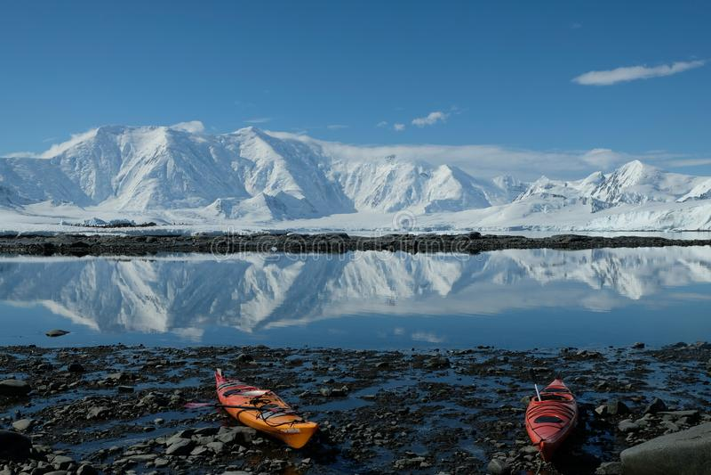 Antarktis orange och röda kajaker i en blå fjärd för spegel royaltyfria foton