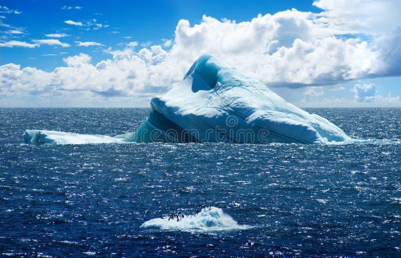 Antarktische Eisinsel lizenzfreie stockfotos