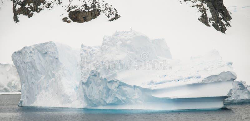 Antarktischer Halbinsel-Eisberg stockbilder