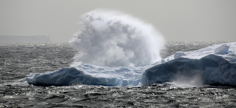 Antarktischer Stromstoß stockbilder