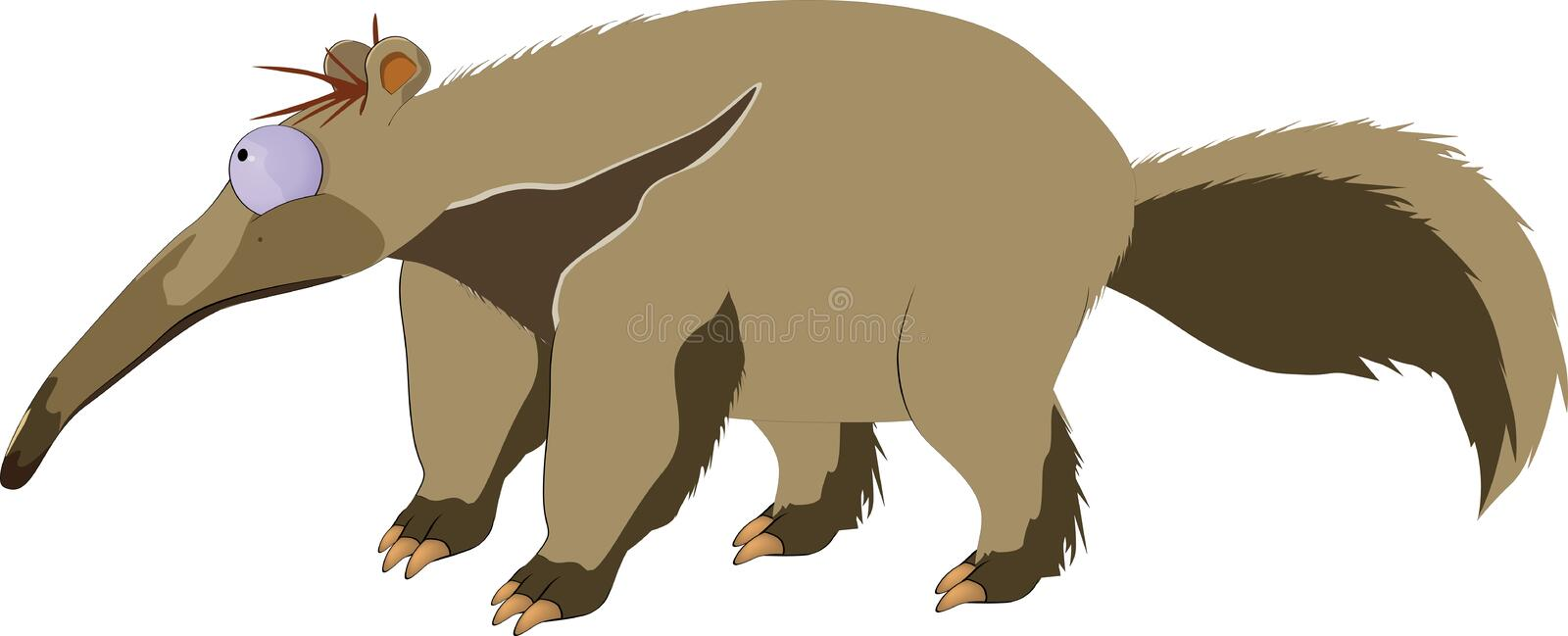 anteater royaltyfri illustrationer