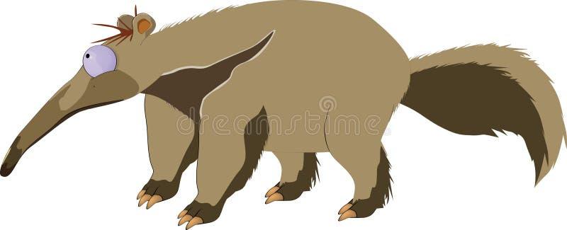 anteater ελεύθερη απεικόνιση δικαιώματος