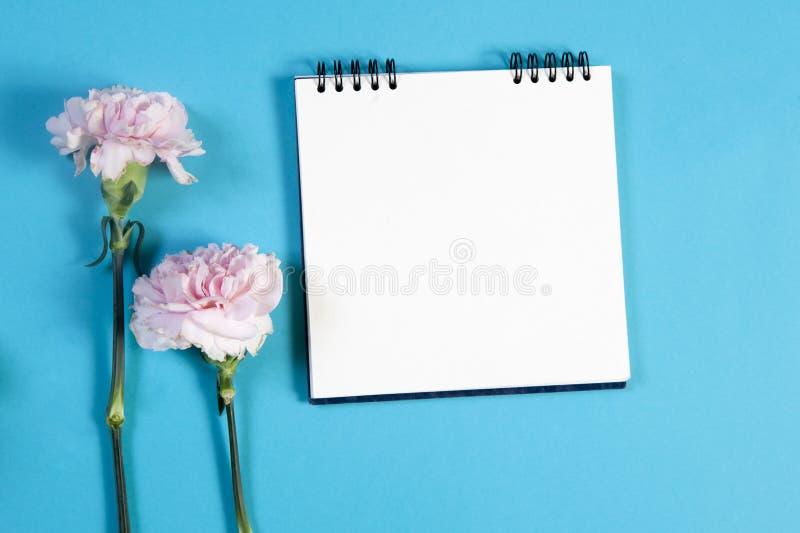 anteckningsbok på vårarna med en rosa nejlika på en blå bakgrund med ett tomt utrymme för anmärkningar arkivfoton