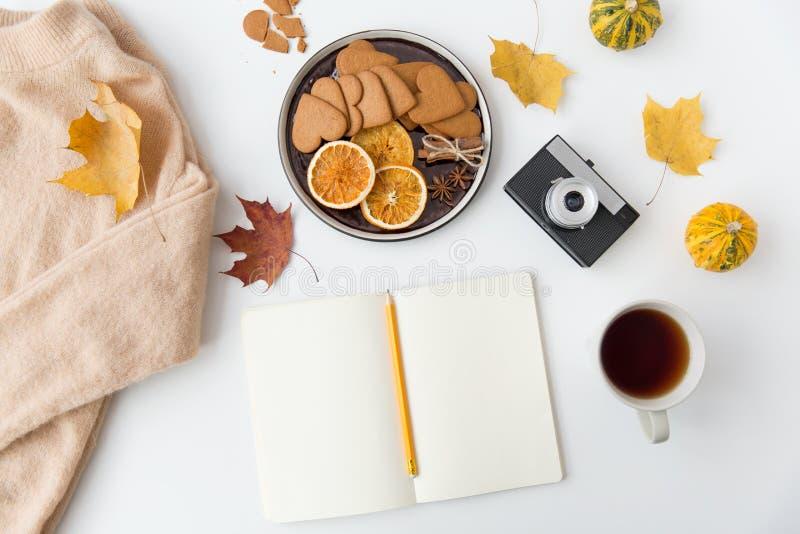 Anteckningsbok, varm choklad, kamera och höstsidor royaltyfri fotografi
