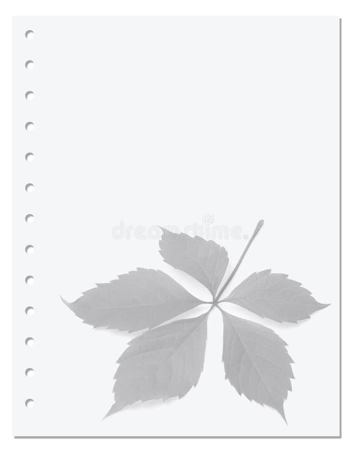Anteckningsbokpapper med bladet för virginia ranka royaltyfri bild