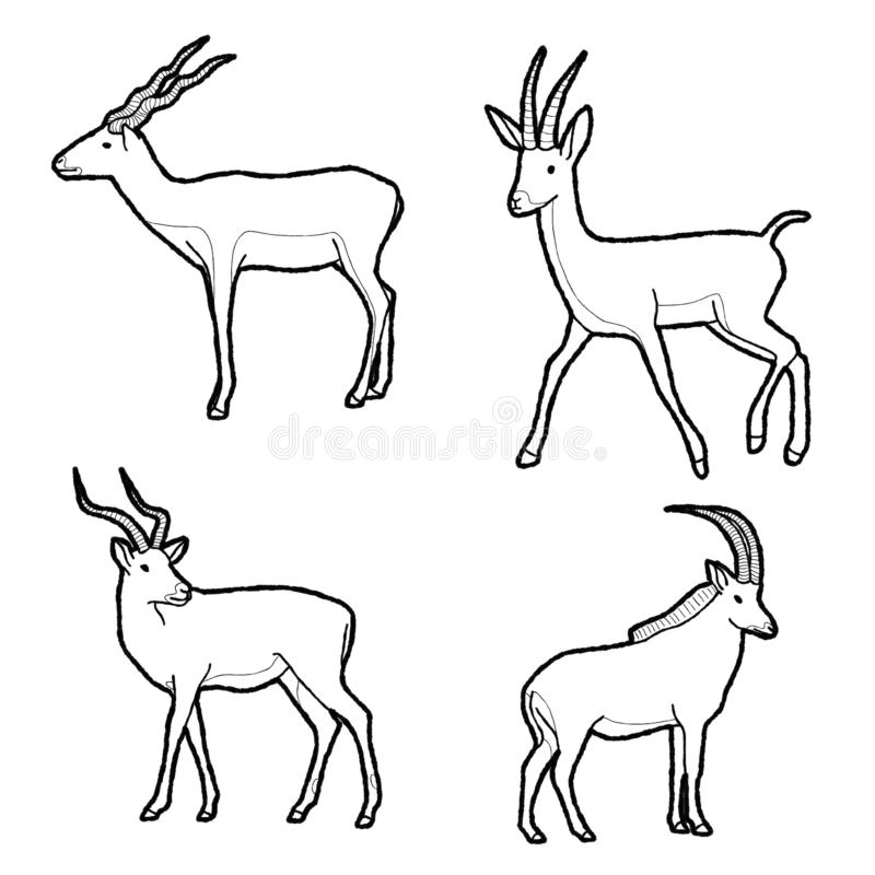 Antelope Animal Vector Illustration Hand Drawn Cartoon Art. Antelope Animal Vector Pencil Illustration Hand Drawn Cartoon Art stock illustration