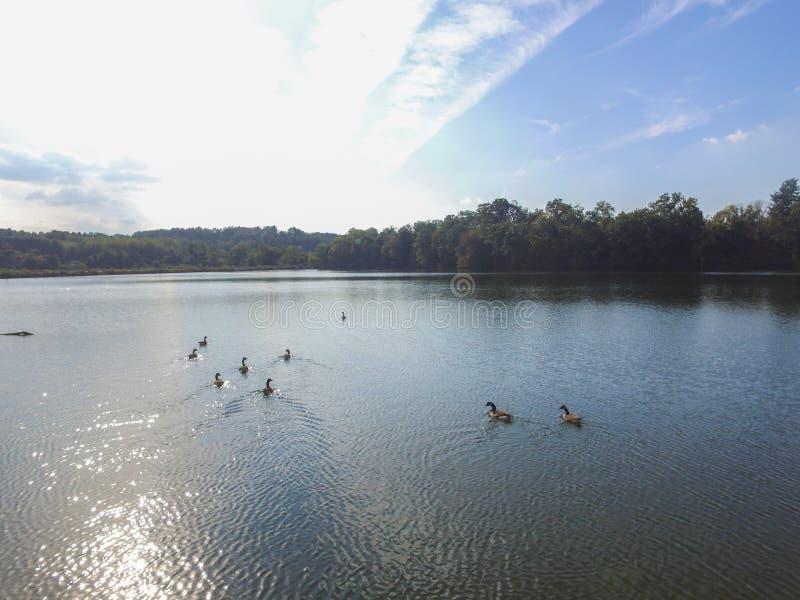 Antena do lago Redman em William Kain Park em Jacobus, Pennsylva imagem de stock