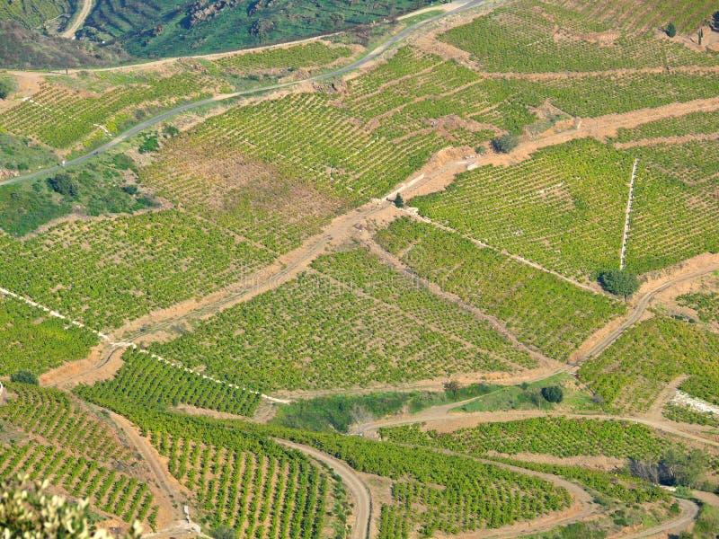 Antena krajobraz winniców pola w Francja zdjęcie stock
