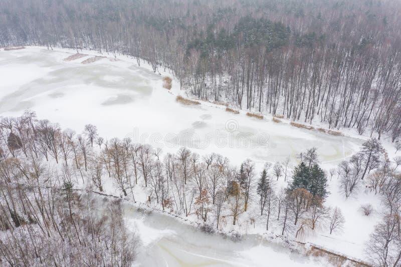 antena marznący jeziorny widok czarna niebieska footway zdjęcia scenerii białych tonował zimowe lasu Krajobrazowa fotografia chwy obraz royalty free