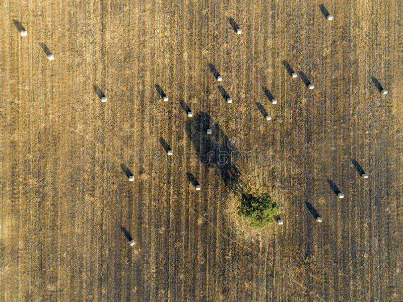 A antena rolou a paisagem do campo dos campos da terra do feno no Alentejo, Portugal fotos de stock royalty free