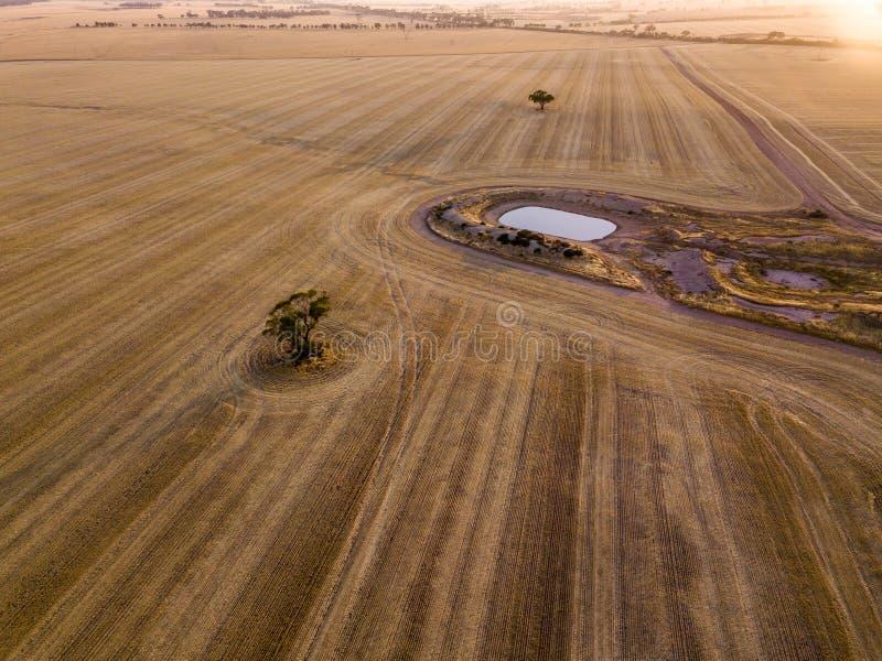 Antena strzał suchego brązu rolnej ziemi, żniwa wzory z i obrazy stock