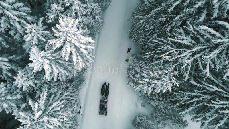 Antena wierzchołka puszka widok koński jadący sanie w lesie w spada śniegu fotografia stock