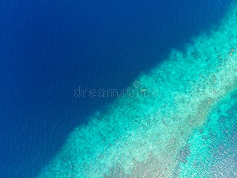 Antena wierzchołka puszka widoku rafy koralowej tropikalny morze karaibskie, turkusowa błękitne wody Indonezja Moluccas archipela fotografia royalty free
