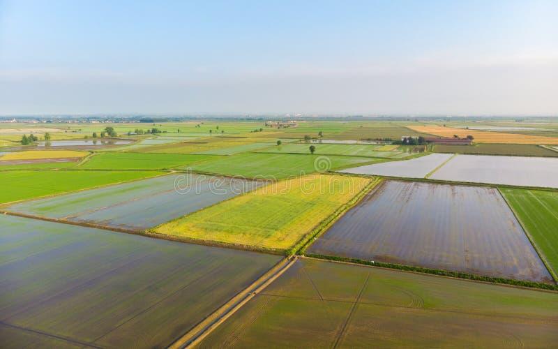 Antenn: risfält översvämmad lantlig italiensk bygd för kultiverad fältjordbruksmark, åkerbruk ockupation, sprintime i Piedmont, royaltyfri bild