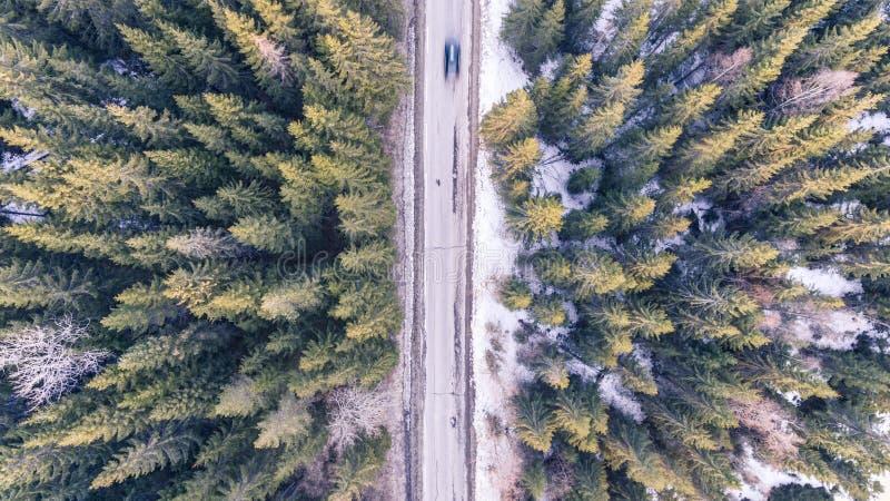 Antenna, automobile, Bird' s, occhio fotografia stock libera da diritti