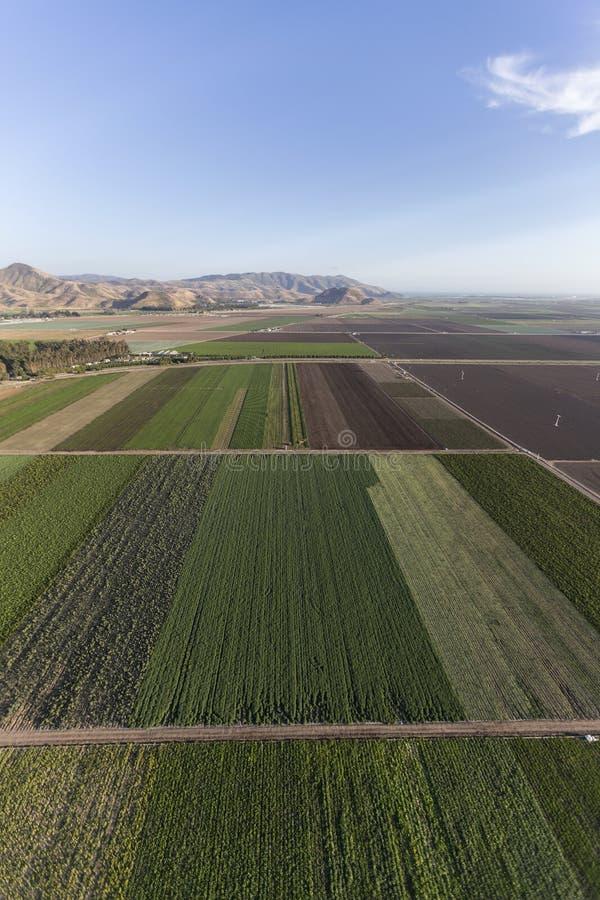 Antenne de terres cultivables de Camarillo la Californie photographie stock libre de droits