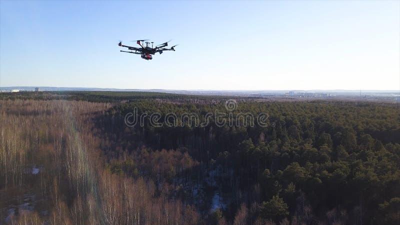 Antenne pour le vol de caméra de bourdon dans le ciel au-dessus de la forêt à feuilles caduques et conifére sur le fond de ciel b image libre de droits