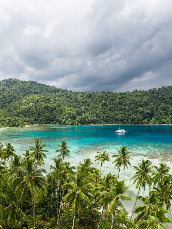 Antenne van Tropisch Eiland in Papoea-Nieuw-Guinea stock fotografie