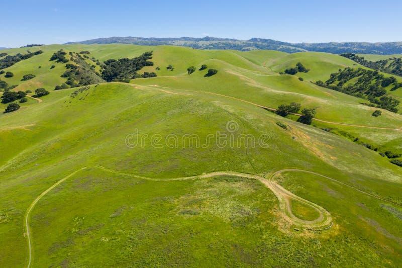 Antenne von Hügeln und von Spur im Drei-Tal, Nord-Kalifornien lizenzfreie stockbilder