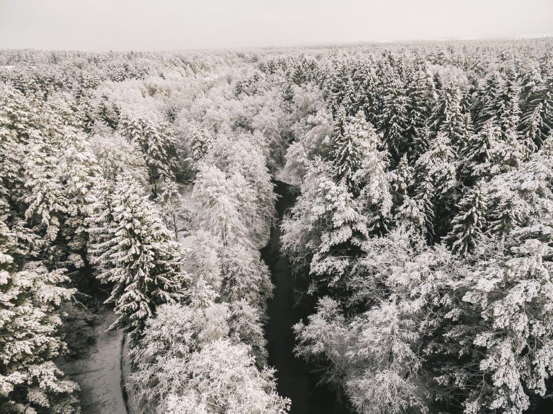 Antennen besk?dar av skogfloden i tid av vinterdagen arkivbilder