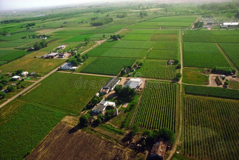 antennen fields grön sikt royaltyfri foto