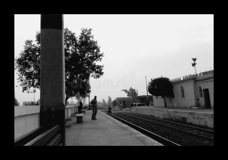 Anthereseite der Eisenbahn in Ägypten lizenzfreie stockbilder