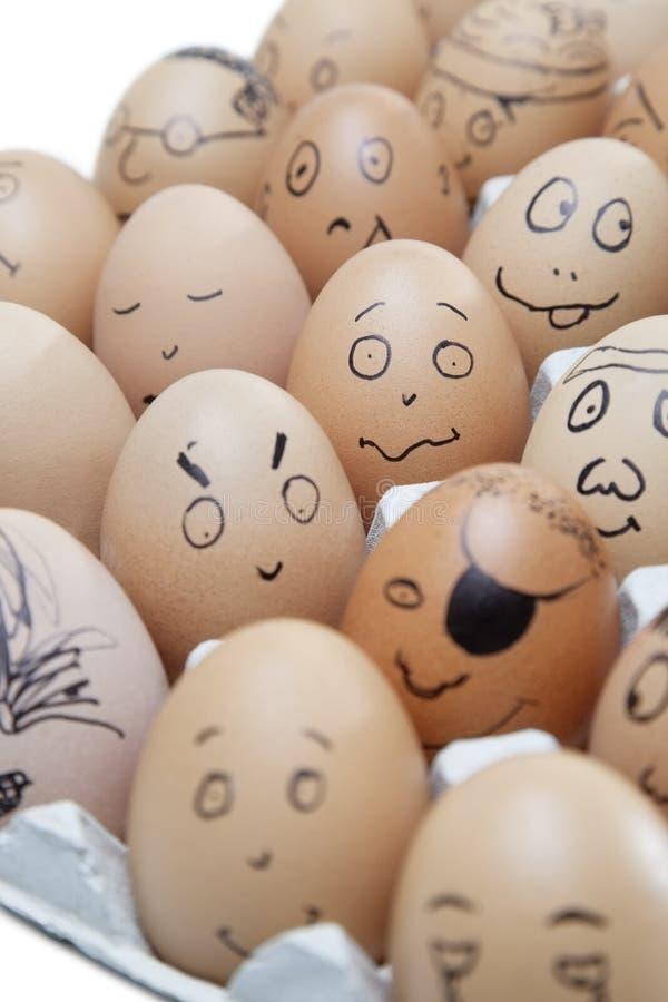 Anthropomorphic bruna ägg som är ordnade i låda mot vit bakgrund royaltyfri foto