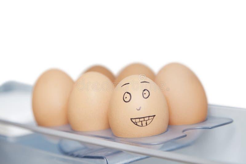 Anthropomorphic och vanliga bruna ägg i låda mot vit bakgrund royaltyfri foto