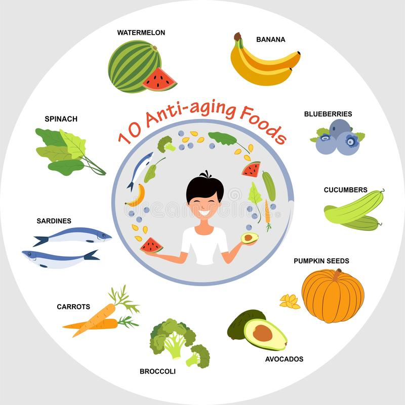 Anti-Aging Foods. For your health - illustration royalty free illustration