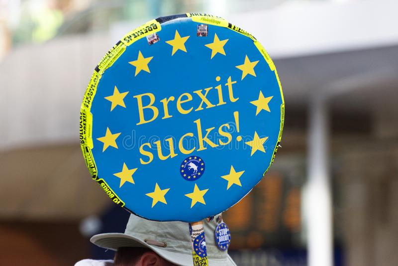 An anti Brexit demonstrator in London on October 19 2019. An anti Brexit protestor in London with a 'Brexit Sucks' sign on Oct 19 2019 in stock photos