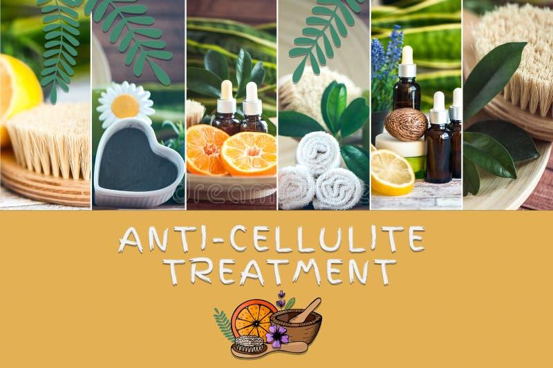 Anti--cellulite behandlingbegrepp Foto och illustration, tecknad filmstil Organiska, bio naturliga skönhetsmedel royaltyfria bilder