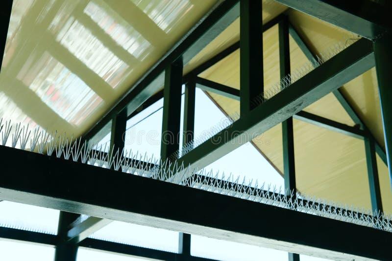 anti transitoire d'oiseau pour le bâtiment protecteur du pigeon photos libres de droits