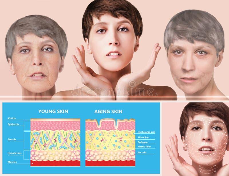 Anti-veroudert, schoonheidsbehandeling, verouderen en jeugd, die skincare, plastische chirurgieconcept de opheffen royalty-vrije stock foto