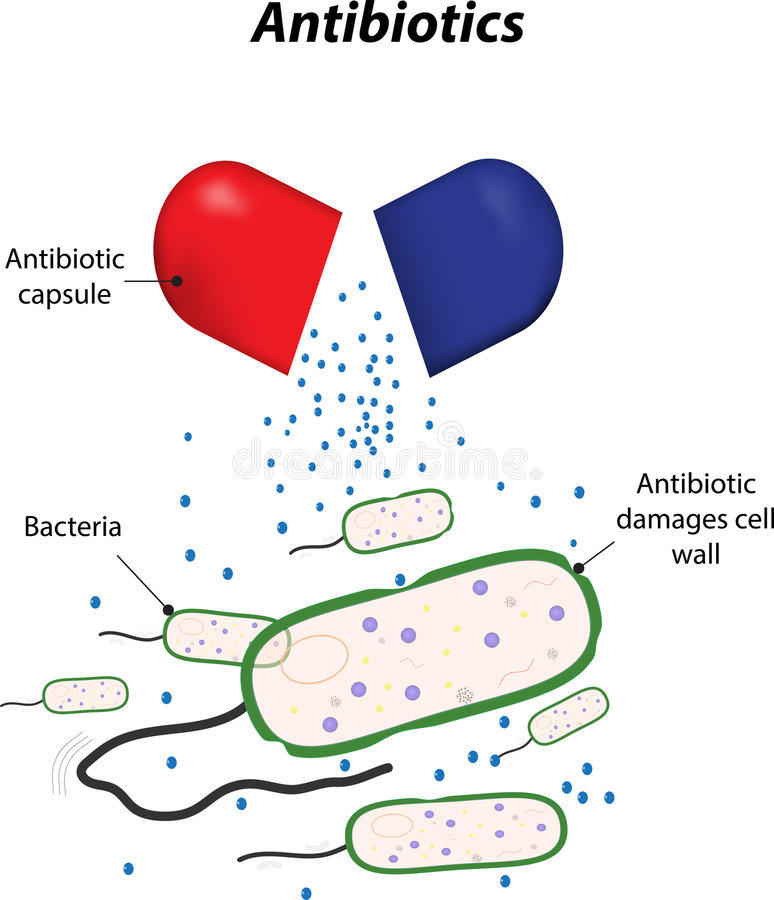 Antibiotics royalty free illustration