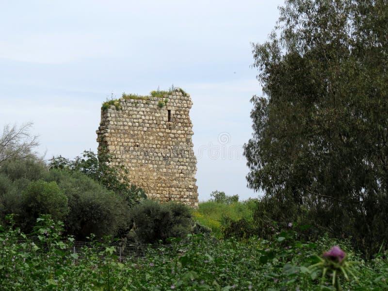 Antiche rovine del Forte di Borgogna, Hefer Valey, Israele immagine stock