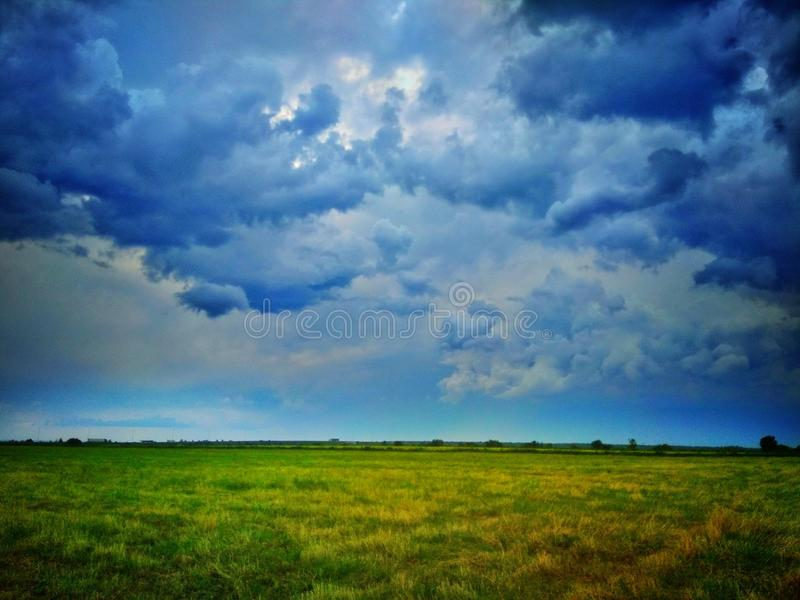 Grassland. At anticipation of gale stock photos