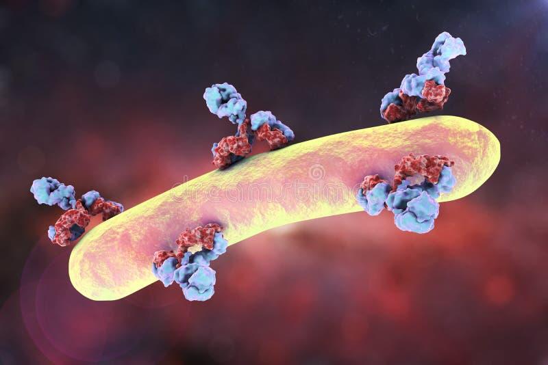 Anticorpi che attaccano batterio royalty illustrazione gratis