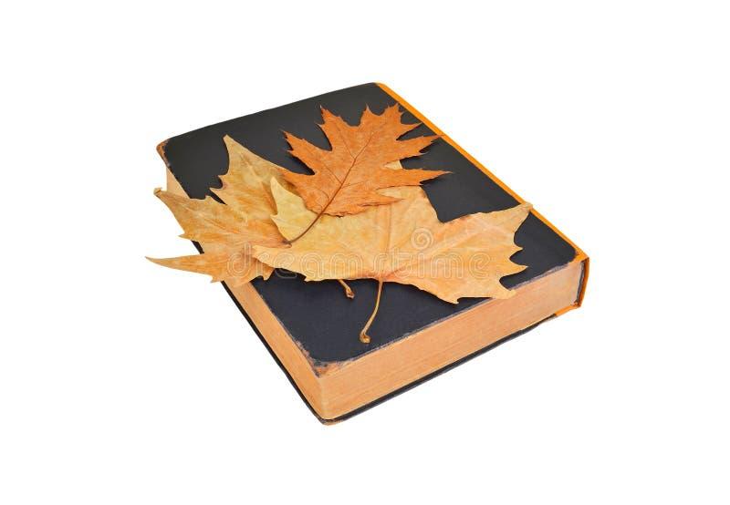 Antiek boek en de herfstblad royalty-vrije stock fotografie