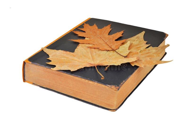 Antiek boek en de herfstblad stock foto's