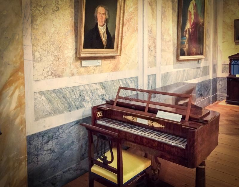 Antiek muzikaal instrument stock foto