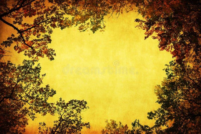 Antiek stijlframe van boombovenkanten royalty-vrije stock foto