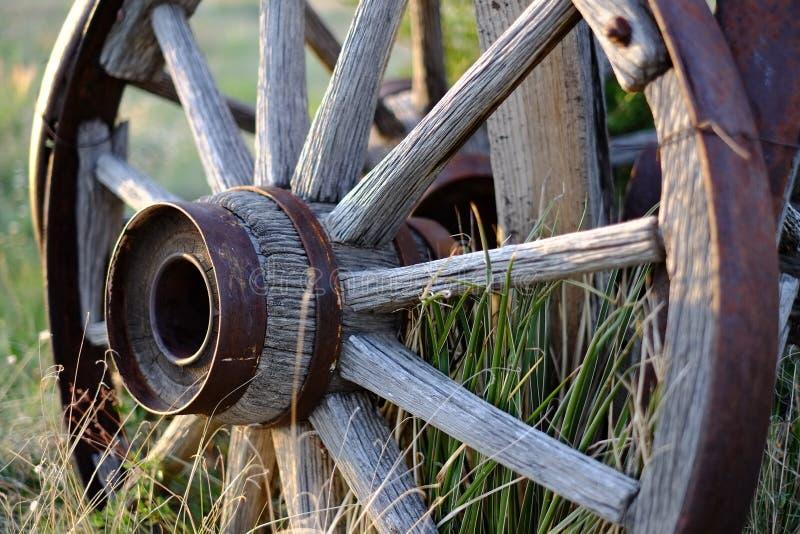 Antiek wagenwiel bij zonsondergang stock foto
