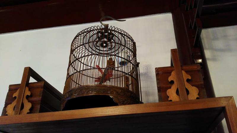 Antieke Chinese vogelkooi royalty-vrije stock foto