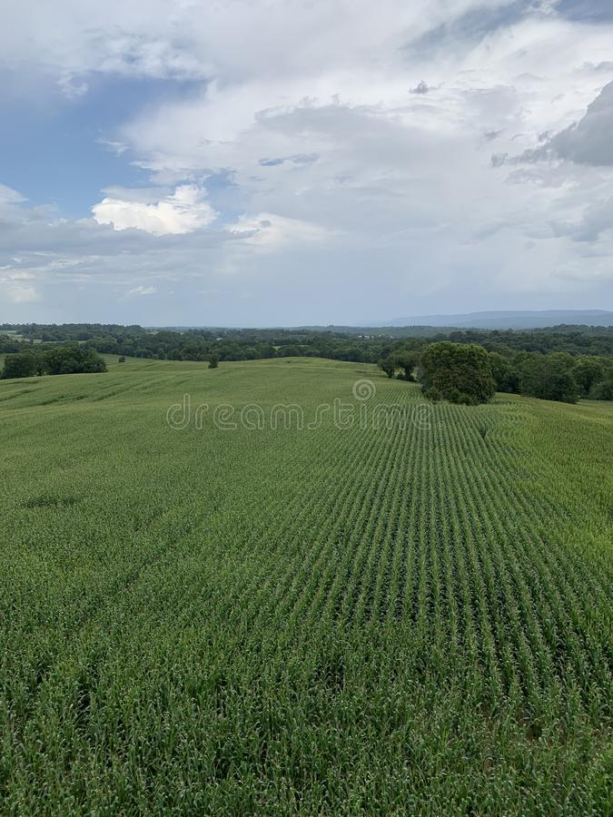 Antietam pole bitwy, Sharpsburg Maryland obraz royalty free