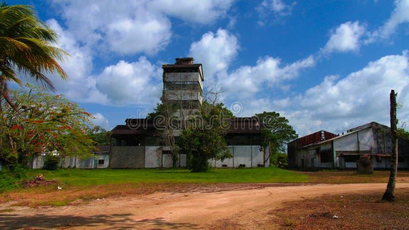 Antiga fábrica do rum em Marienburg, Suriname imagem de stock